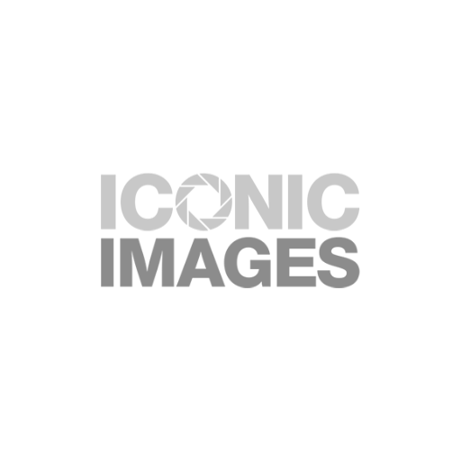 Growth Capital - Iconic Images logo
